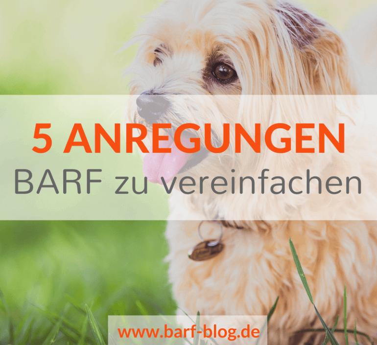 5 Anregungen, wie Du Dich bei BARF mehr auf das Wesentliche konzentrieren kannst