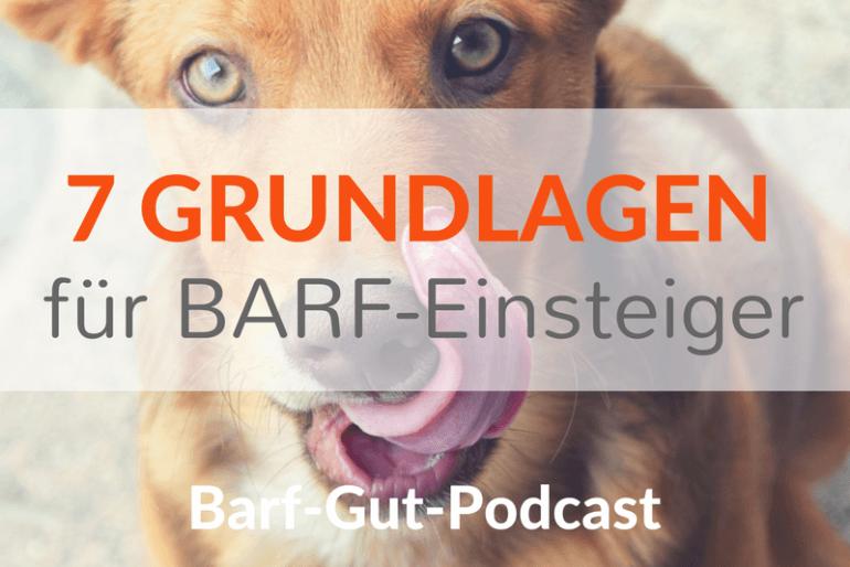[BGP011] 7 Grundlagen für BARF-Einsteiger oder: Welches Wissen braucht man als Anfänger?