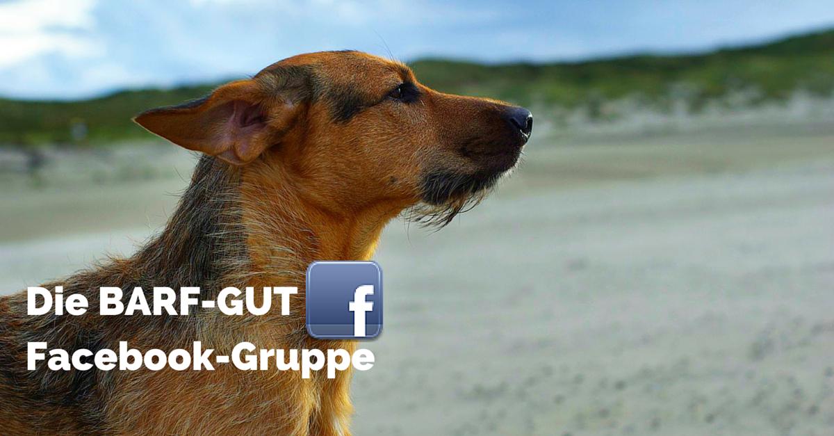 BARF-GUT Facebook-Gruppe