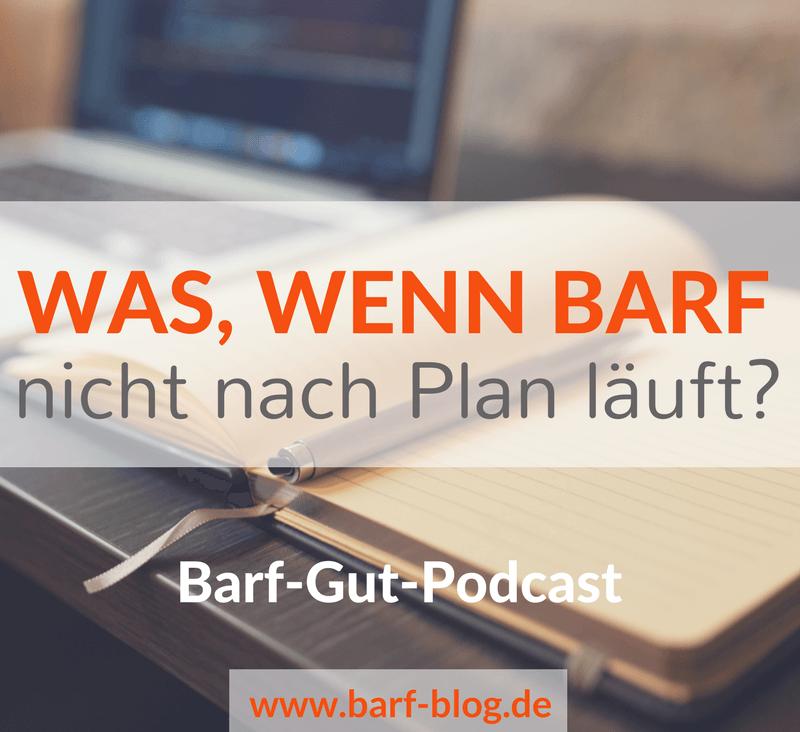 Barfen Podcast