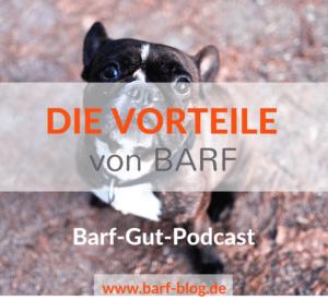 Vorteile BARF