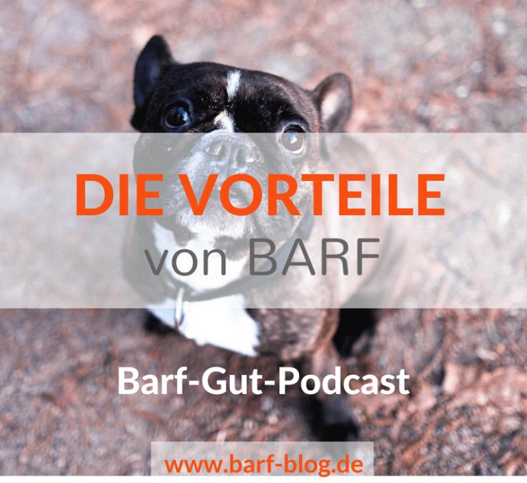 Podcast [BGP001] Die wichtigsten Gründe für BARF und welche Vorteile Dein Hund oder Deine Katze von einer Umstellung hat