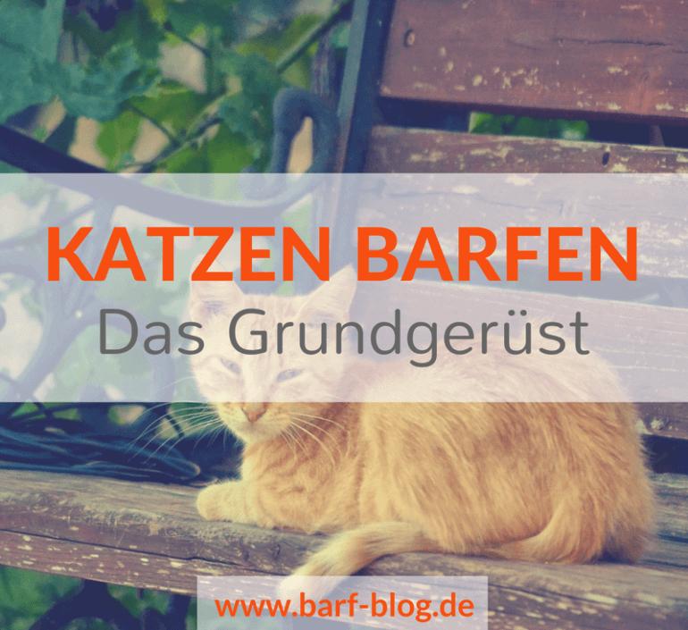 Katzen barfen – Das Grundgerüst