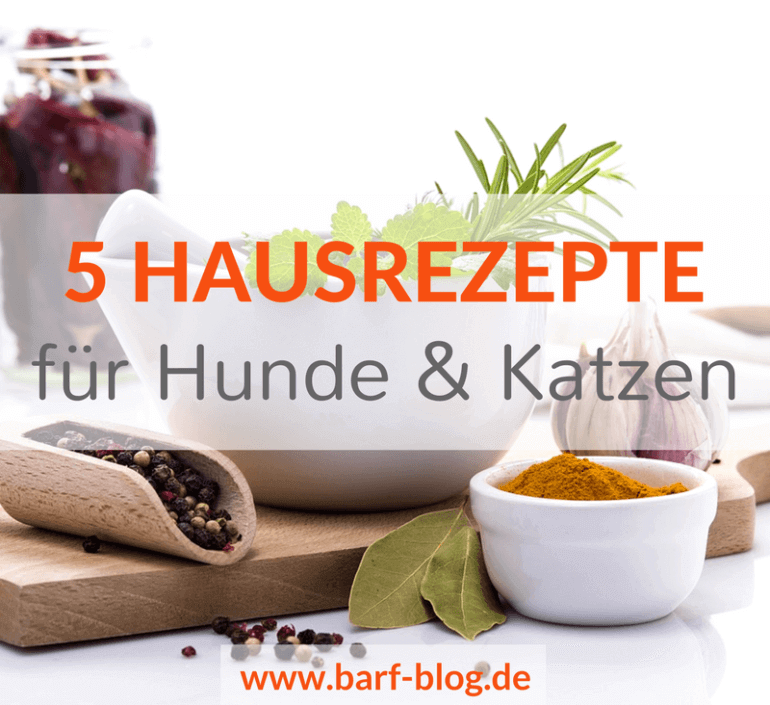 barf knochenbr he morosche m hrensuppe wurmwidriges pesto. Black Bedroom Furniture Sets. Home Design Ideas
