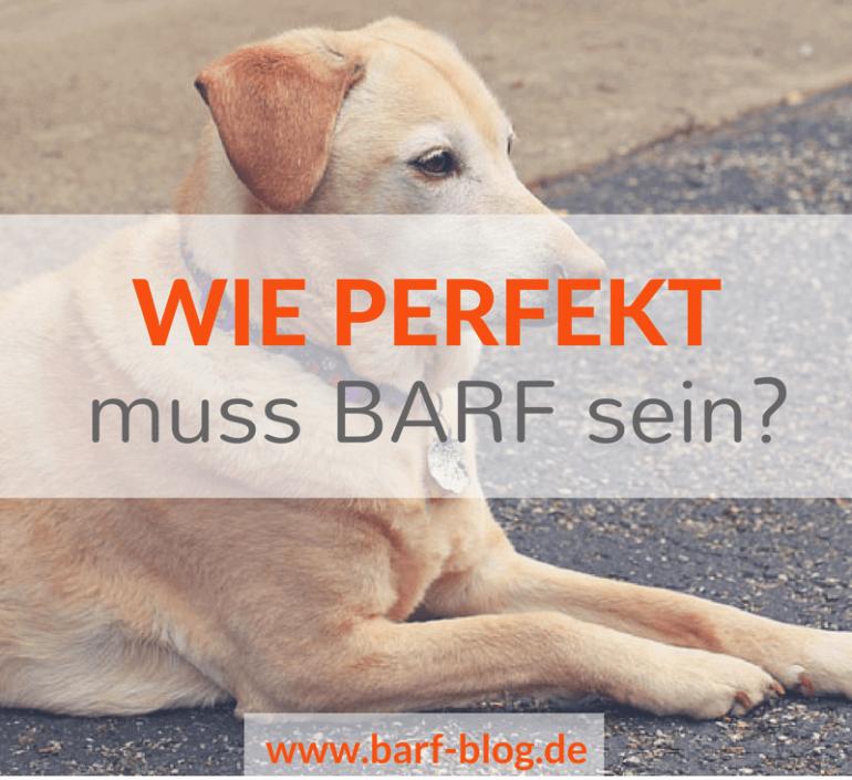 Warum Perfektion allein kein gutes Futter macht oder: Wie exakt musst Du bei BARF eigentlich füttern?
