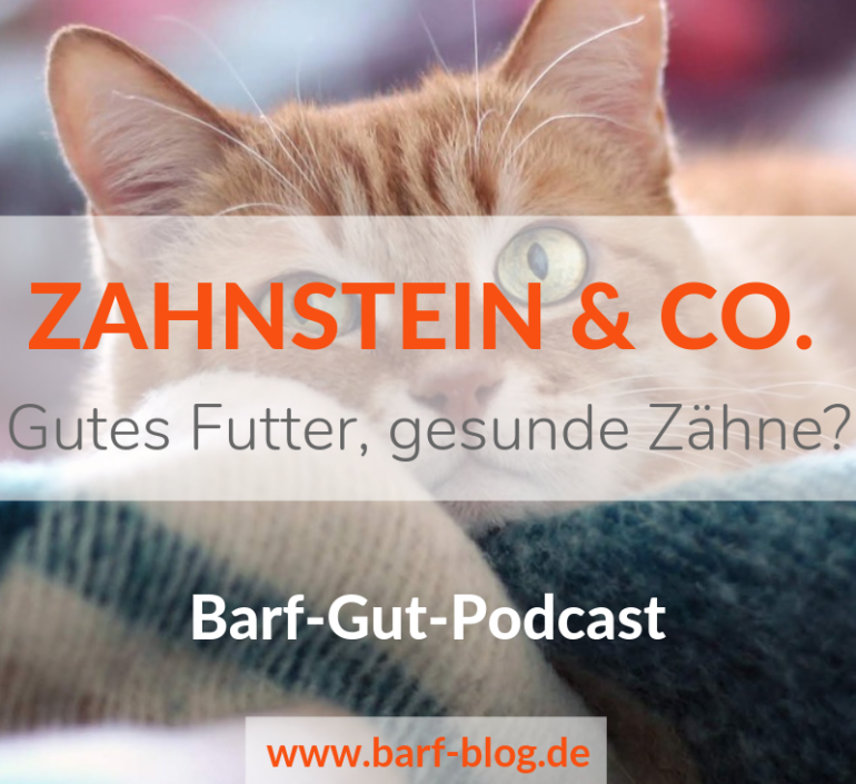 [BGP015] Zahnstein & Co. bei Hund und Katze – Was kann man für gesunde Zähne tun?