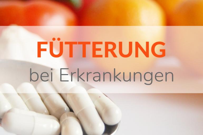 Bei welchen Erkrankungen muss die Fütterung angepasst werden?