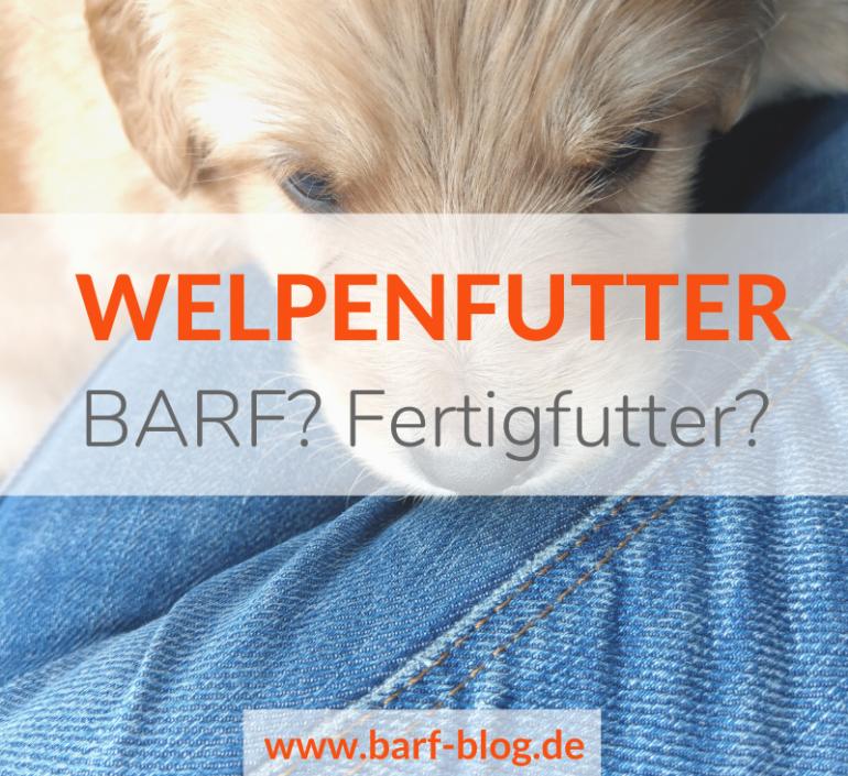 Welpen – BARF oder Fertigfutter?